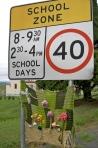 School Zone Posies